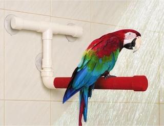 Percha para ducha