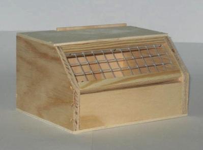 Caja transporte aves