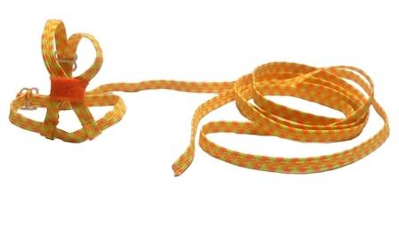 Arnes para agaporni bicolor (amarillo y naranja)